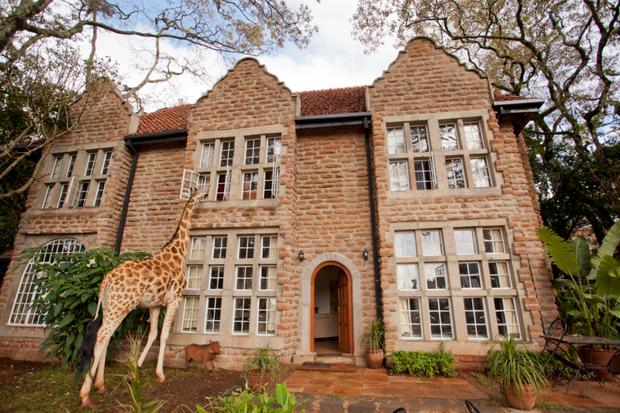 """Khách sạn nổi tiếng nhất châu Phi vì cho du khách ăn sáng cùng hươu cao cổ: Dễ thương thật, nhưng cái giá thì """"chát"""" quá! - Ảnh 2."""