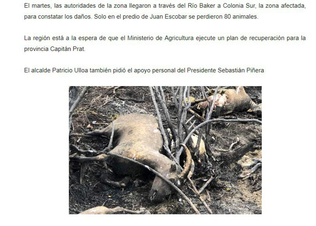 """Những """"đám cháy"""" fake news trên Facebook: Thương rừng Amazon bằng sự thật, đừng mua nước mắt người đọc - Ảnh 3."""