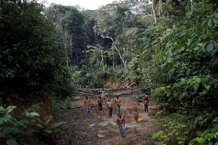 Thổ dân quyết bảo vệ rừng Amazon 'đến giọt máu cuối cùng'