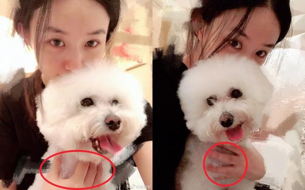 Triệu Lệ Dĩnh khoe series ảnh mặt mộc nhưng câu hỏi lớn nhất của netizen lại là Nhẫn cưới đâu rồi? - Ảnh 4.