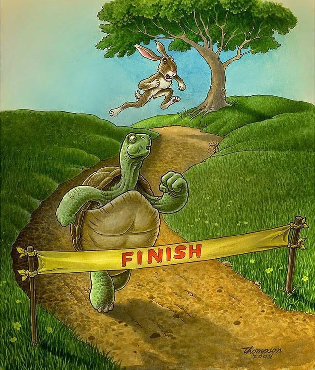 Rùa và thỏ trong môi trường công sở: Rùa sống vội để thành công, thỏ sống chậm để tận hưởng, bạn là ai? - Ảnh 7.
