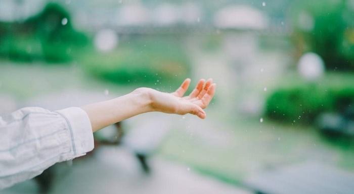 Kiếp người sống được bao lâu, xuôi tay nhắm mắt qua cầu gió bay, hãy vui cho hết kiếp này đừng gieo ân oán, đọa đày lẫn nhau
