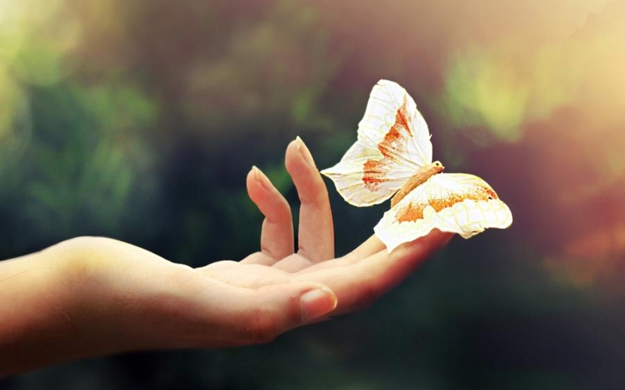 Cuộc đời này, sống đơn giản bao nhiêu thì lòng sẽ hạnh phúc, thanh thản bấy nhiêu - Ảnh 4