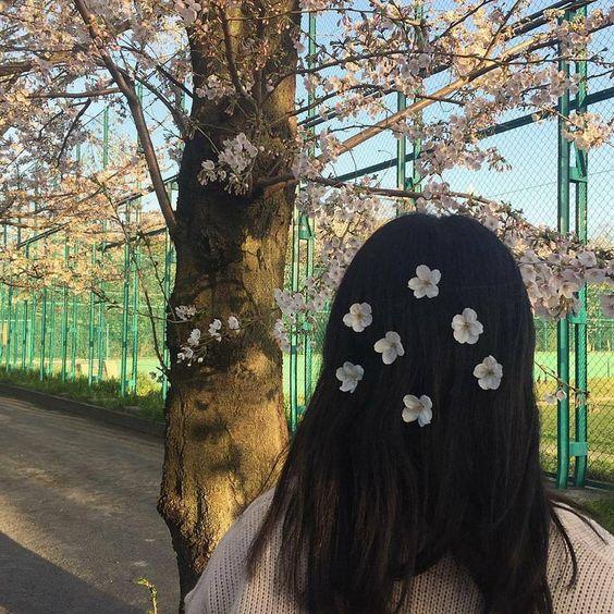 Trong hình ảnh có thể có: cây, ngoài trời và thiên nhiên