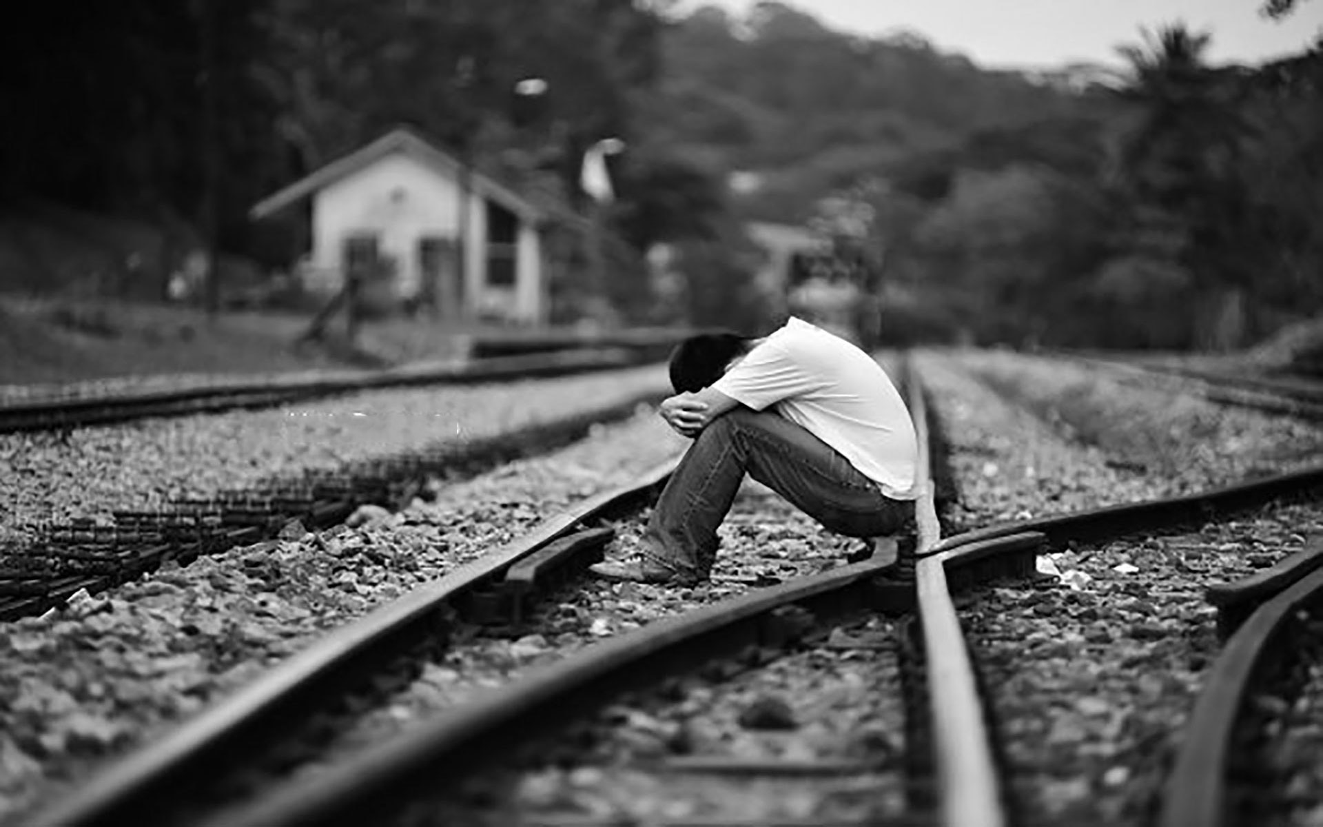 Hình Ảnh Buồn, Cô Đơn 12