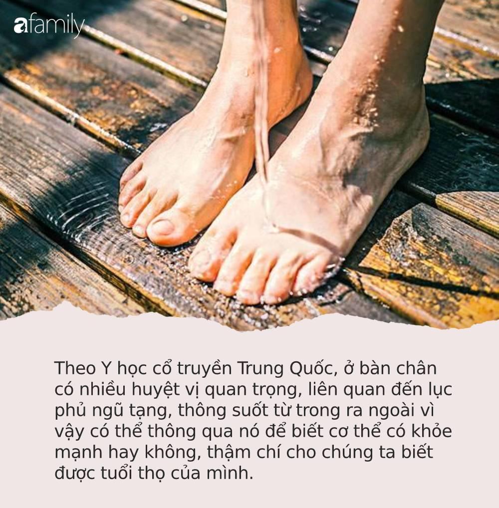 Người sống thọ thường có chung 3 dấu hiệu nhỏ này trên bàn chân: Hãy kiểm tra xem mình có đủ hay không! - Ảnh 1.