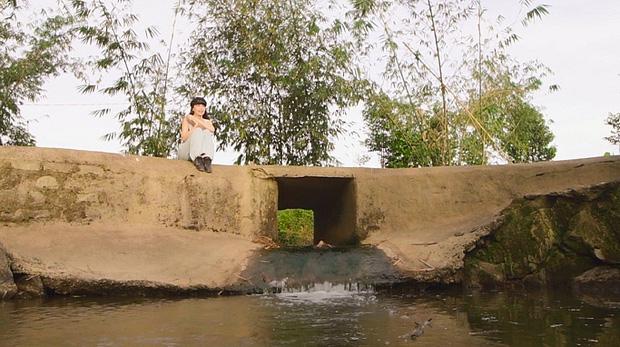Mục sở thị bất động sản cả chục ngàn mét vuông của sao Việt: Chỉ để trồng rau nuôi cá, khu đất của Lý Nhã Kỳ như nông trại thực thụ - Ảnh 12.