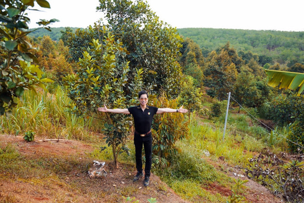 Mục sở thị bất động sản cả chục ngàn mét vuông của sao Việt: Chỉ để trồng rau nuôi cá, khu đất của Lý Nhã Kỳ như nông trại thực thụ - Ảnh 2.
