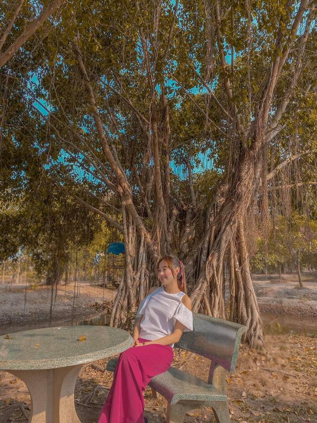 Mục sở thị bất động sản cả chục ngàn mét vuông của sao Việt: Chỉ để trồng rau nuôi cá, khu đất của Lý Nhã Kỳ như nông trại thực thụ - Ảnh 9.