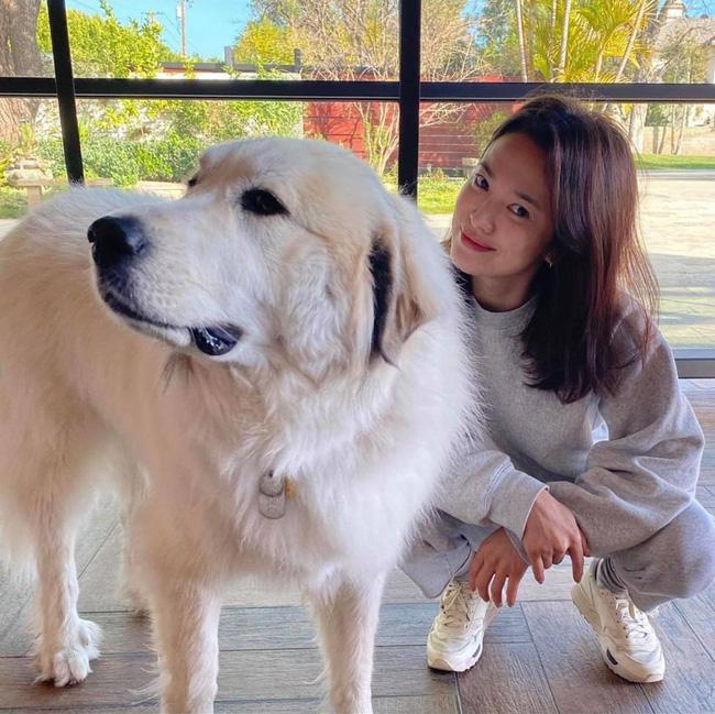 Song Hye Kyo lộ diện sau 20 ngày trở về từ Milan, gây chú ý vì khoảnh khắc này - Ảnh 2.