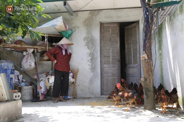 """Cụ bà gần 90 tuổi ở Hà Nội hàng ngày đi cấy, đan lưới làm thú vui tao nhã: """"Các cháu chưa chắc đã khoẻ bằng tôi"""" - Ảnh 3."""
