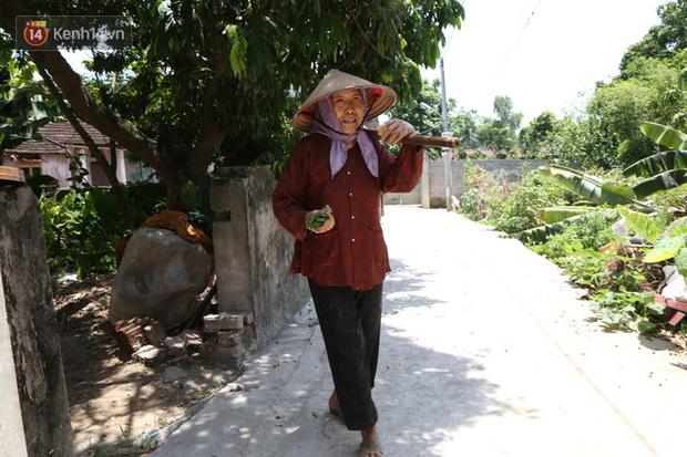 """Cụ bà gần 90 tuổi ở Hà Nội hàng ngày đi cấy, đan lưới làm thú vui tao nhã: """"Các cháu chưa chắc đã khoẻ bằng tôi"""" - Ảnh 1."""