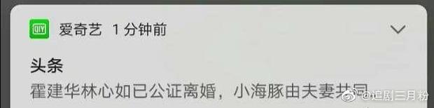 """NÓNG: Rộ tin Lâm Tâm Như - Hoắc Kiến Hoa đã ly hôn, nguồn tin từng dự đoán đúng Phạm Băng Băng - Lý Thần """"toang"""" - Ảnh 4."""