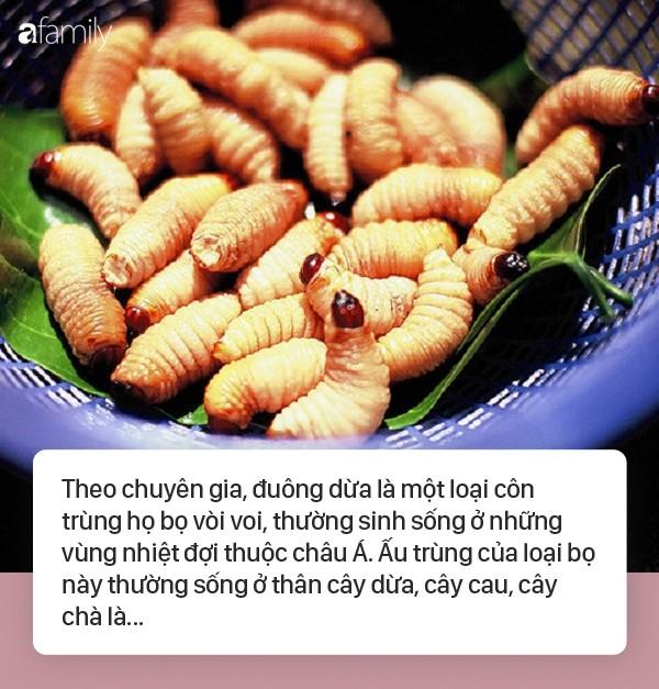 Sốc phản vệ khi ăn đuông dừa, nhộng tằm: Ai cũng cần biết những điều này để bảo vệ sức khỏe, tính mạng
