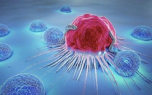 Sai lầm trầm trọng của bệnh nhân ung thư khiến cái chết đến sớm hơn