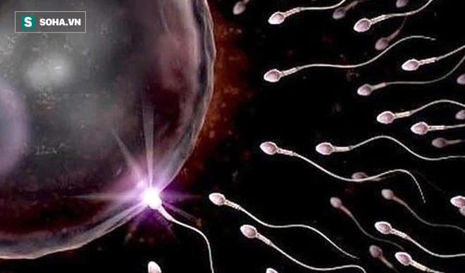 GS nam khoa: Giai đoạn 'vàng' để sinh con trước khi khả năng sinh lý giảm, tinh trùng yếu