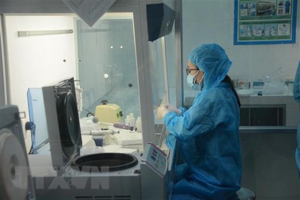 Các chuyên gia xét nghiệm hàng ngàn mẫu bệnh phẩm tại ĐàNẵng